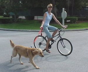 Running and Biking Dog