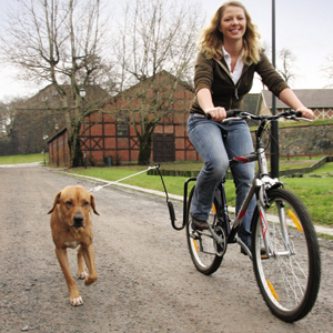 Running and Biking Dogs