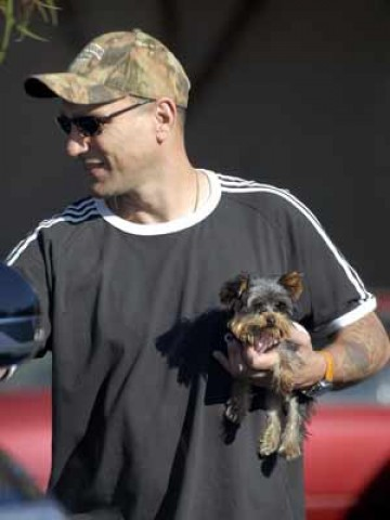 Vinnie Jones Pet - Jack Russell Terrier 3