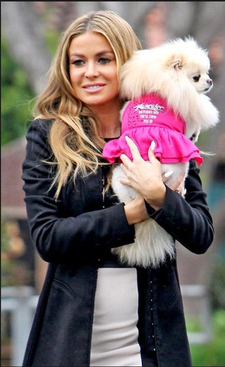 Photo of Carmen Electra & her Dog Spinee