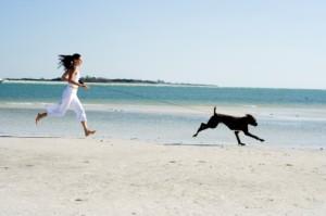 dog exercise on beach