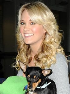 Rat Terrier Owned by Carrie Underwood: Celebrity Pet of the Week