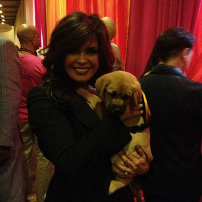 English Bulldog Owned by Marie Osmond Celebrity Pet of the Week 5