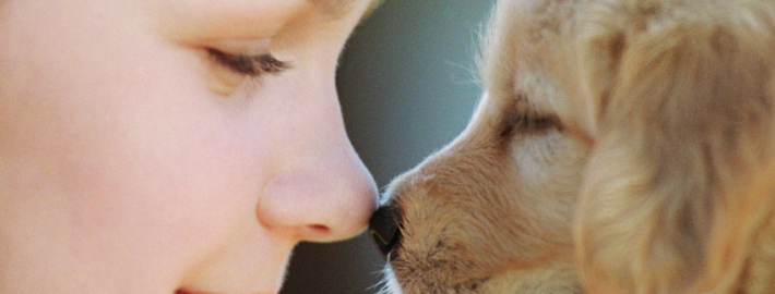 Rubbing noses with a puppy